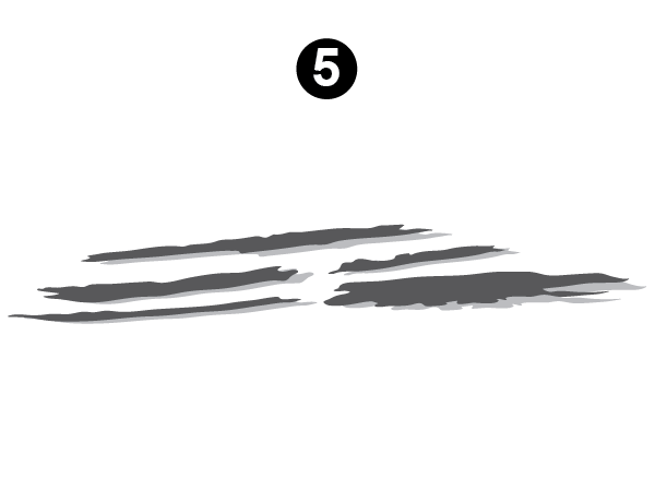 Side Graphic Section #5-RS/LH/DS