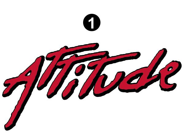 """Large Attitude Logo 44.8"""""""