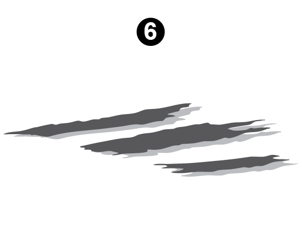 Side Graphic Section #6-RS/LH/DS
