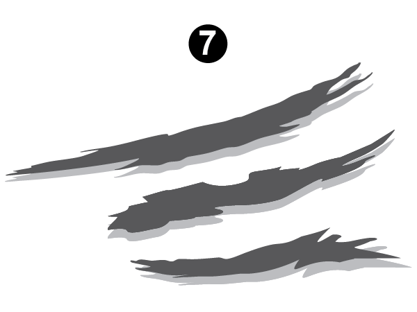 Side Graphic Section #7-RS/LH/DS