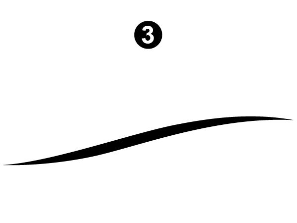 Lg Side Sweep-Curbside/Right Side/ Passenger Side