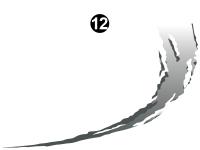 Raptor - 2011 Raptor Velocity FW - Top Tear Spike