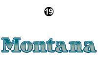 Large Montana Logo