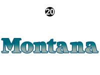 Small Montana Logo